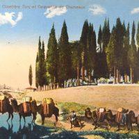 Ελλάδα Συλλεκτικό Καρτ Ποστάλ Greece Vintage Postcard Smyrne