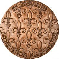 France Bronze Medal Conseil Général D'Indre Et Loire In Original Box